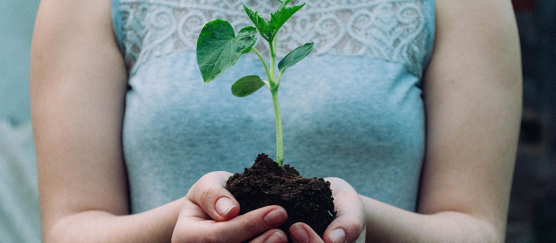 ISDI implementa Salesforce Sustainability Cloud para reducir su impacto ambiental